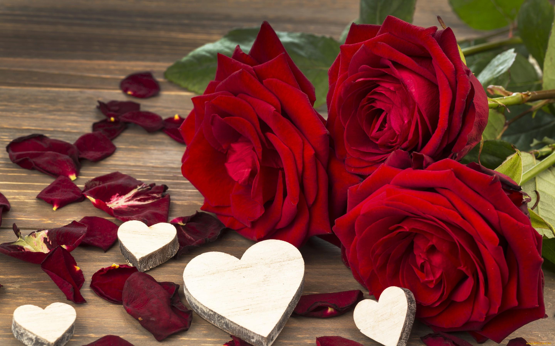 Картинки с цветами любовь